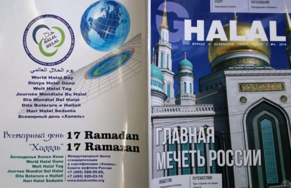 World Halal Day celebration in different countries