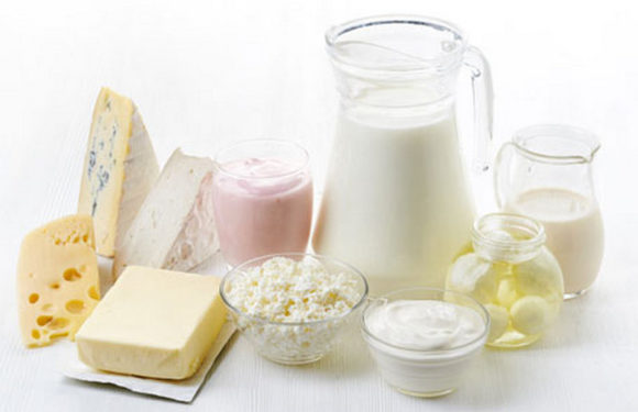 CRITICAL CONTROL POINTS IN MILK AND DAIRY PRODUCTS IN GİMDES HALAL AND TAYYIB CERTIFICATION SYSTEM