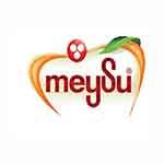 meysu-ikram1