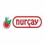 nurcay-bronz1